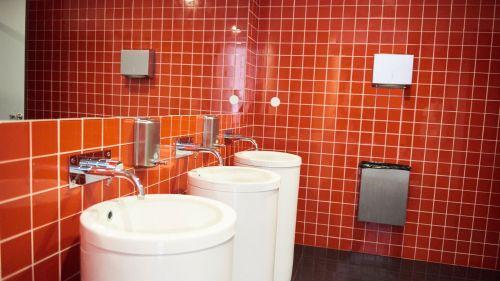 WC Feminino - visitas
